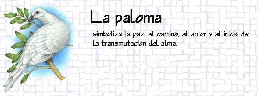 paloma_2